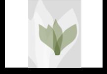 Κέντρο Πληροφόρησης για τη Χλωρίδα του Πάρνωνα